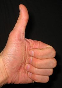 336px-Thumbs_up